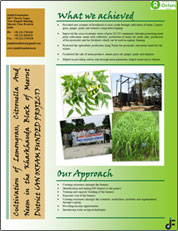 Cultivation Of Lemongrass Citronella & Neem